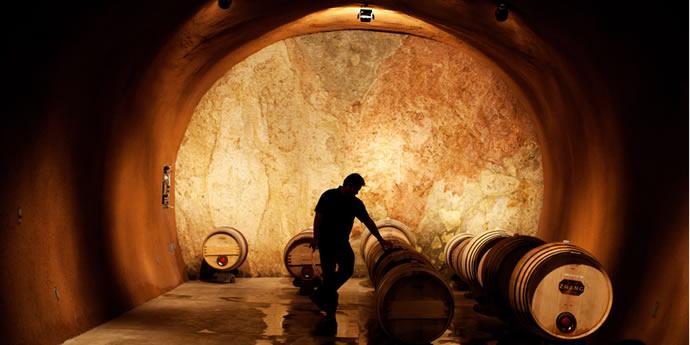 マスターソムリエが解説するカリフォルニアワインの地域別比較と分析