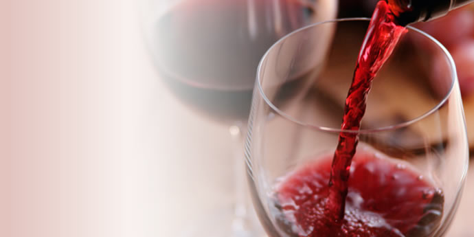 ★2 Days Course★ WSET® Level 1 <beginner Course>