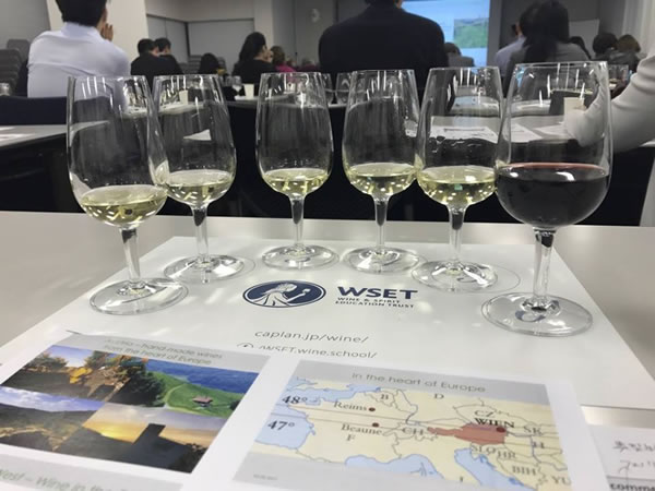The perfect complement to WSET and Sommelier courses